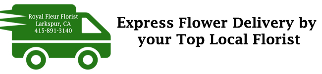 Express Flower Delivery by your Premier Florist